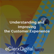 Miami-improving-customer-experience-workshop-Search